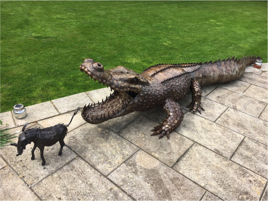 Crocodile Sculpture in Garden