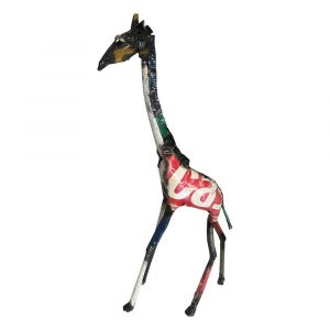 Giraffe Colourful